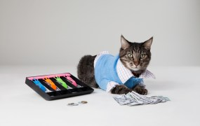 We can't all rely on Max the Accountant Cat to take care of payroll and taxes.