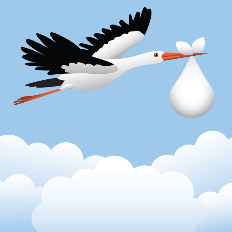 Stork Baby Svetlana Prikhnenko shutterstock