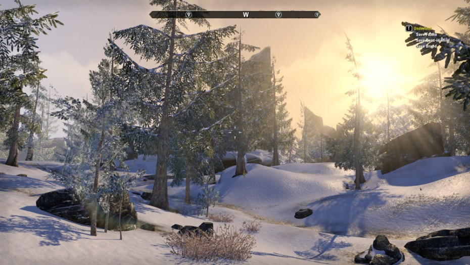 A picture of the snow-covered pinewood forest on Bleakrock Isle in The Elder Scrolls Online.
