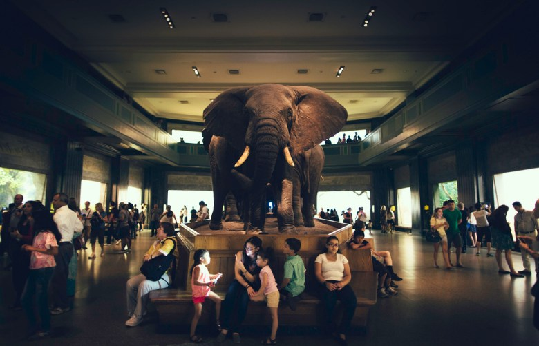 Elephant in the room Guian Bolisay Flickr
