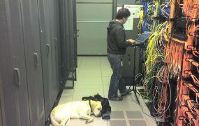 Guy dog data center Sean Ellis Flickr