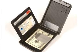 iWallet biometric protected wallet