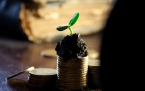 marketing-technology-investment