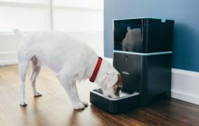 Petnet smart pet feeder