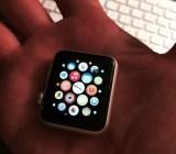 Apple Watch App Screen