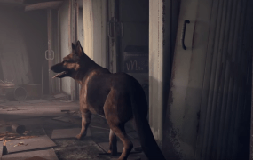 Hey! You probably don't play as a dog.