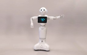 """Pepper"" by Softbank"