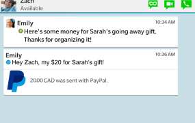 paypal-screenshot2