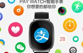 alibaba-pay-watch-1