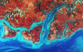 Landsat Steve Black Flickr