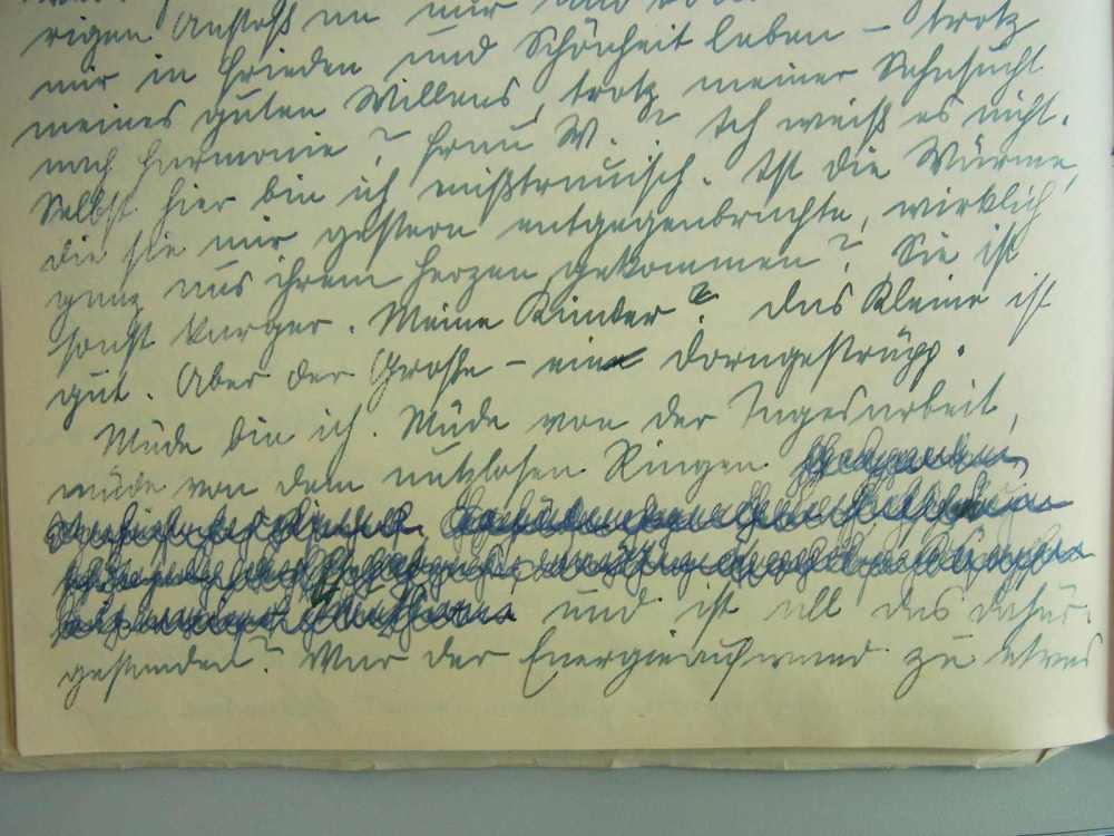 Aus dem unveröffentlichten Tagebuch der Sozialistin Erna P. in Wien von 1941