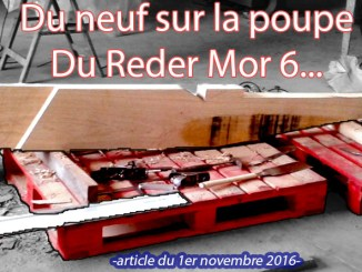 article-1er-novembre-2016-v2-nb