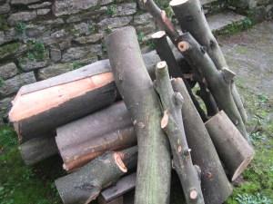 Au au commencement était le bois! Ici, celui du voisin...