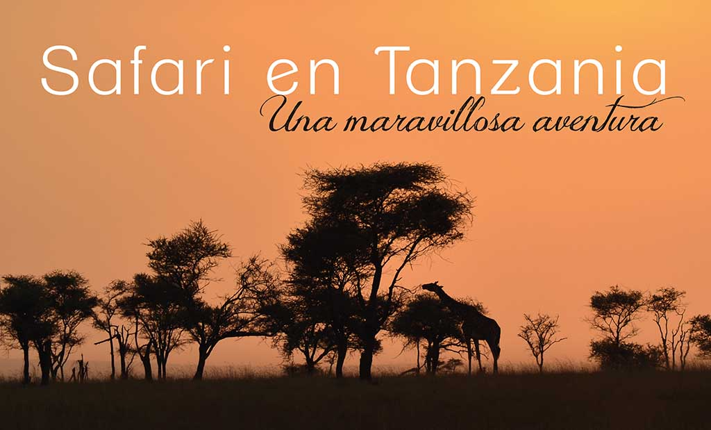 Portada_safari Tanzania-01