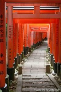 Kyoto_81