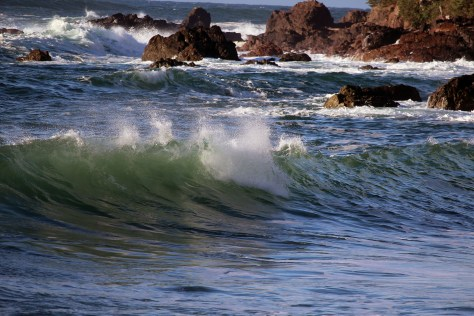 Palmerston Surf