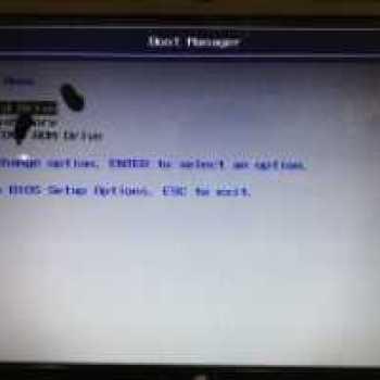 оранжевый PLA