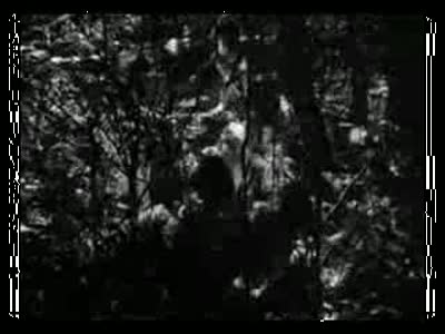 Rashomon_2_clip0(1)