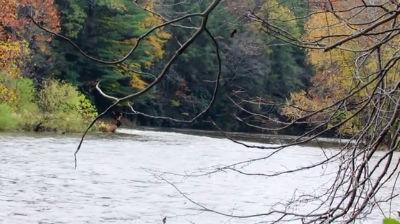 Penn's Creek 2014