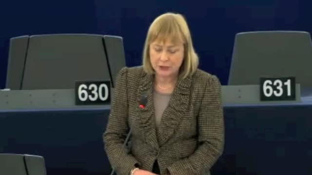 Mary European Parliament 13/01/15