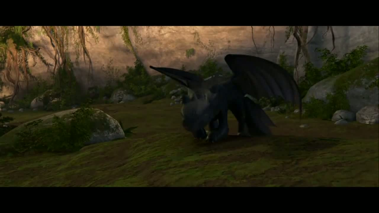 Friendship-How to Train Your Dragon