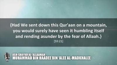 Rectifying the heart with the Quraan  Shaykh Muhammad bin Haadee
