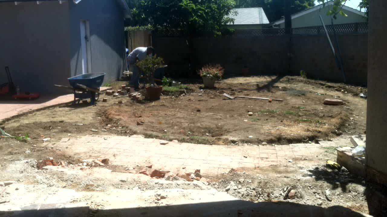 Backyard Demo Day 2