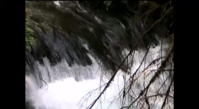 Pearsoney Falls 2009