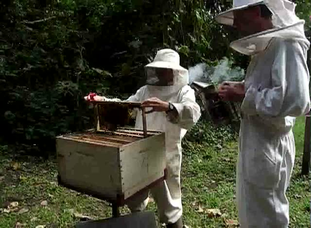 New Beekeepers – Andrew and Sarah Hodges