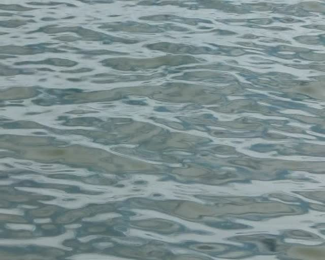 Studland Bay ripples & reflections (1)