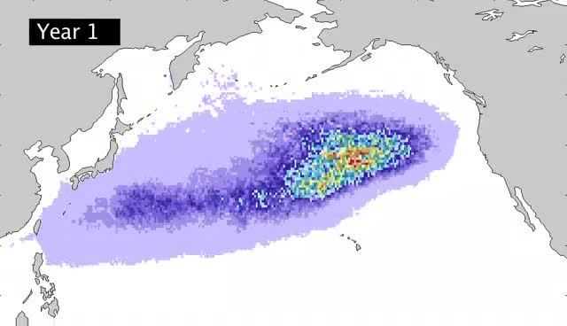 The Great Pacific Garbage Patch To Get Hit With Debris From Japanese Tsunami The Truth