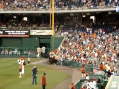 Teddy tackled by the Oriole Bird May 23 2009