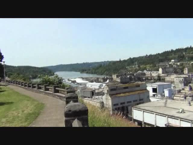 Willamette Industry