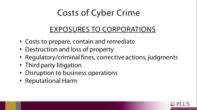 Cyber Crime clip