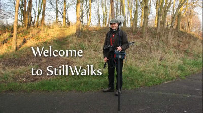 Welcome to StillWalks