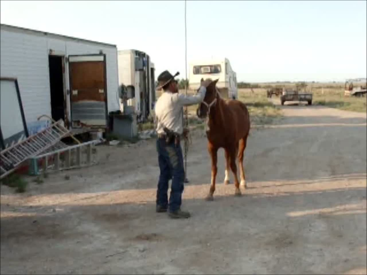 Valley Meat Employee Equine Snuff Video