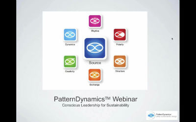 Conscious Leadership for Sustainability PatternDynamics Webinar with Tim Winton