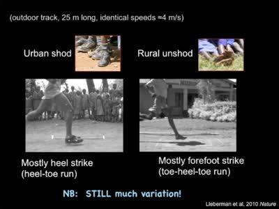 Dan Lieberman: Barefoot Running
