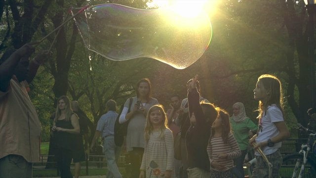 Bubbles in New York City
