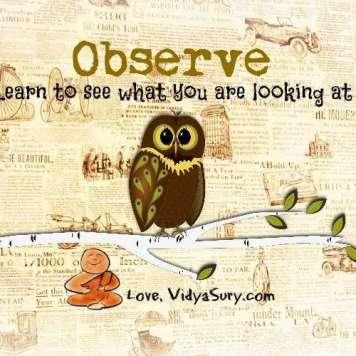 observe vidya sury