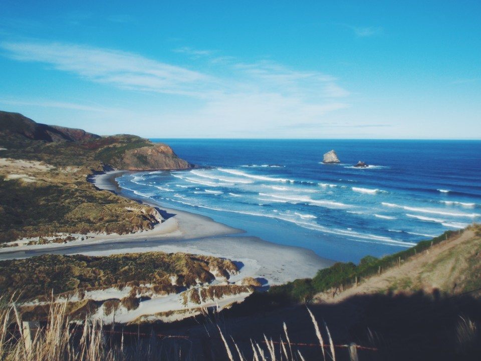 VM's travel guide to the South Island of New Zealand: Dunedin.