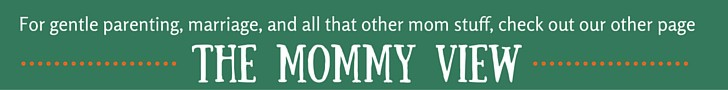 The Mommy View banner