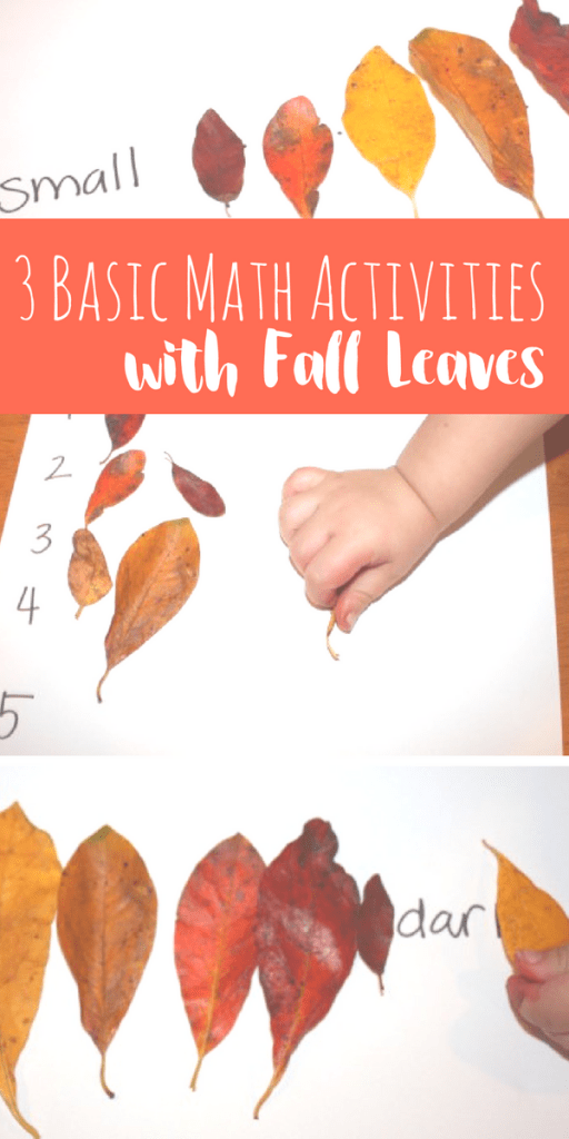 These 3 activities are fun ways to work on basic preschool math with fall leaves! Included is color and size sequencing and counting practice!