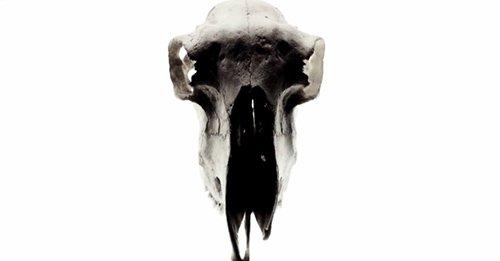 Bones equal death.