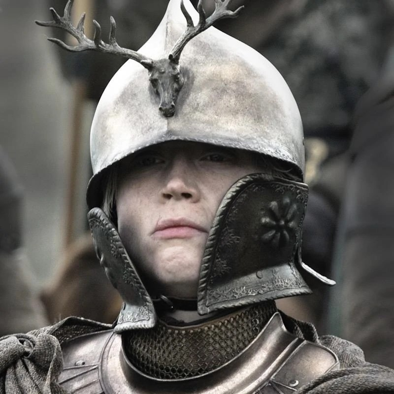 brienne kingsguard helmet