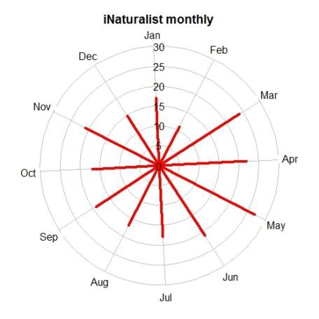 ReptileIndia tempolar monthly