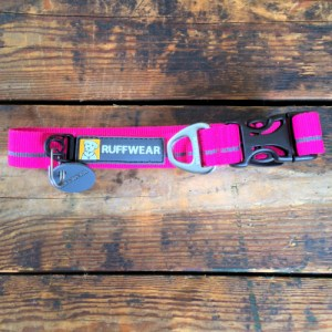 Ruffwear Hoopie Collar wild berry