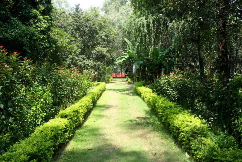 The Nature Trail - Butterfly Park Chandigarh