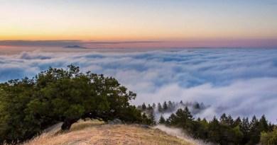 Фотограф 18 месяцев снимал туманы Сан-Франциско, чтобы создать удивительный 90-секундный 4K Timelapse.