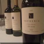 Sophenia Synthesis - The Blend. De lo mejor de la expo.